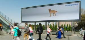 L'association Battersea Dogs & Cats Home sensibilise les passants à l'adoption d'animaux avec des panneaux interactifs